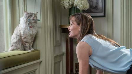 Jennifer Garner and Mr Fuzzypants in Nine Lives